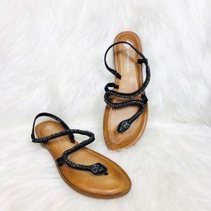 Antonio Melani Samantha Snake Sandals